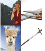 4 Immagini 1 Parola 4 Lettere LAMA