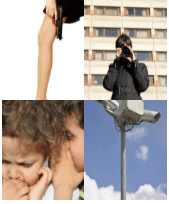 4 Immagini 1 Parola 4 Lettere SPIA
