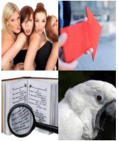 4 Immagini 1 Parola 5 Lettere VERSO
