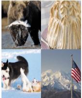 4 Immagini 1 Parola 6 Lettere ALASKA