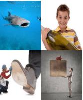 4 Immagini 1 Parola 6 Lettere GRANDE