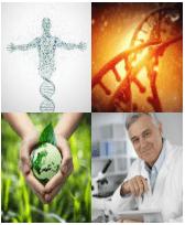 4 Immagini 1 Parola 8 Lettere BIOLOGIA