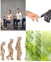 4 Immagini 1 Parola 8 Lettere EVOLVERE