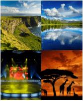 4 Immagini 1 Parola 8 Lettere SCENARIO