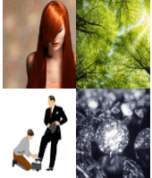 4 Immagini 1 Parola 9 Lettere SPLENDERE